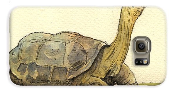 Reptiles Galaxy S6 Case - Turtle Galapagos by Juan  Bosco