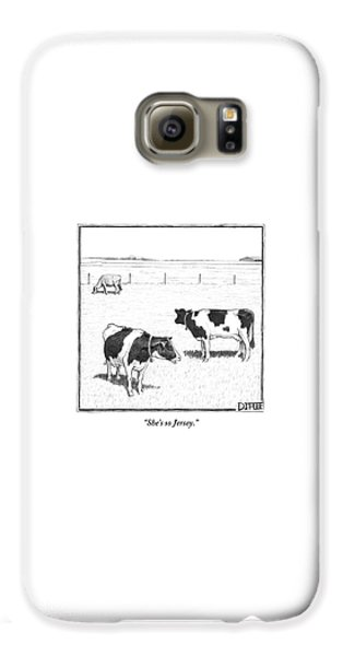 Cow Galaxy S6 Case - Two Spotted Cows Looking At A Jersey Cow by Matthew Diffee