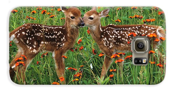 Two Fawns Talking Galaxy S6 Case