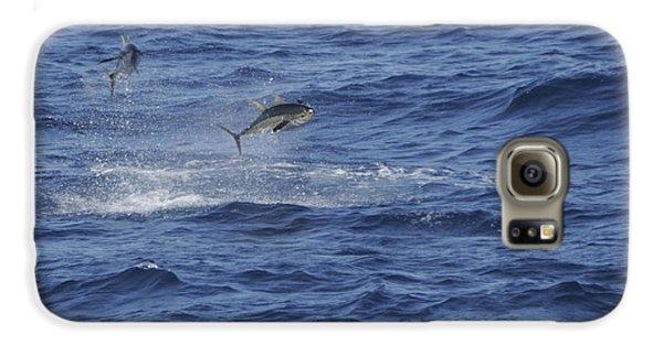 Two Jumping Yellowfin Tuna Galaxy S6 Case