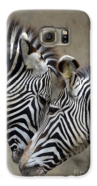 Two Zebras Galaxy S6 Case by Mark Newman