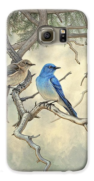 Bluebird Galaxy S6 Case - Under The Old Juniper-mountain Bluebirds by Paul Krapf