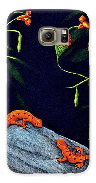 Newts Galaxy S6 Case - Understory by Danielle R T Haney