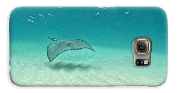 Underwater Flight Galaxy S6 Case