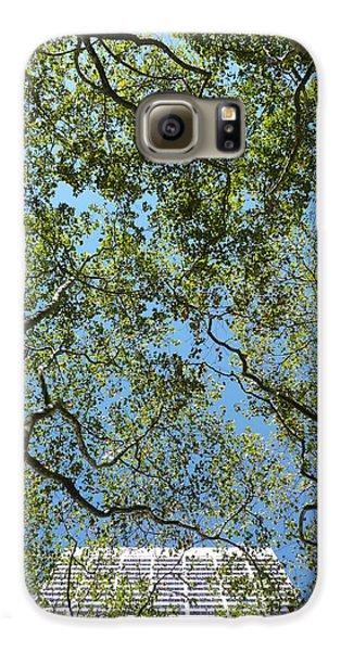 Urban Growth Galaxy S6 Case