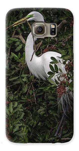Venice Rookery Egret Galaxy S6 Case
