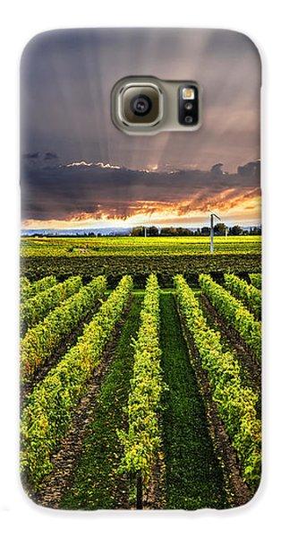 Vineyard At Sunset Galaxy S6 Case