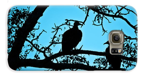 Vultures Galaxy S6 Case by Delphimages Photo Creations
