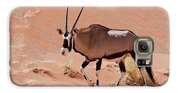Walking Male Oryx (oryx Gazella Galaxy S6 Case