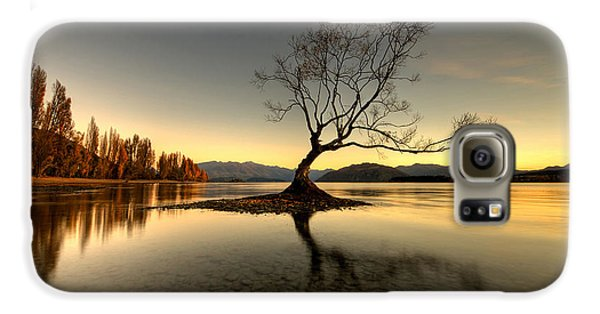 Wanaka - That Tree 1 Galaxy S6 Case