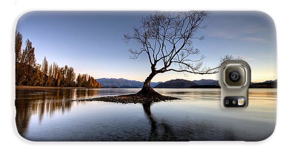 Wanaka - That Tree 2 Galaxy S6 Case