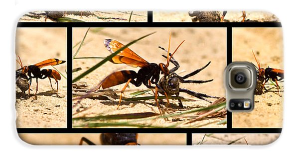 Galaxy S6 Case featuring the photograph Wasp And His Kill by Miroslava Jurcik