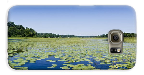 Water Lilies Galaxy S6 Case by Gary Eason