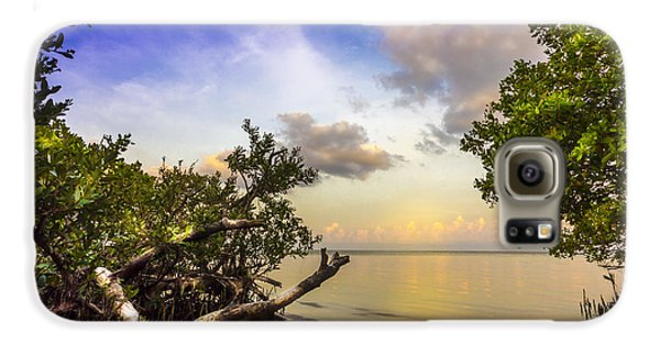 Mangrove Galaxy S6 Case - Water Sky by Marvin Spates
