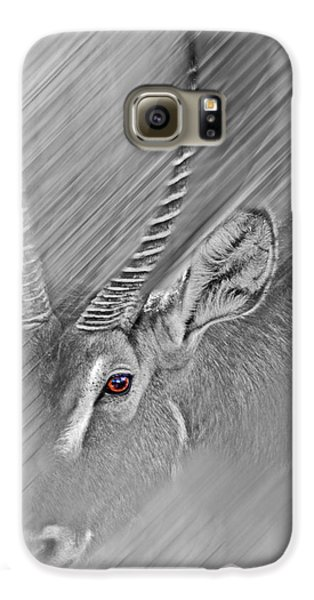 Waterbuck Galaxy S6 Case