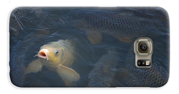 White Carp In The Lake Galaxy S6 Case