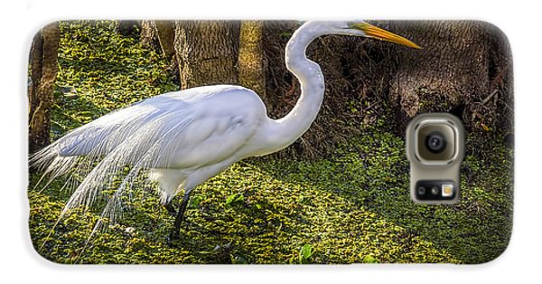 White Egret On The Hunt Galaxy S6 Case