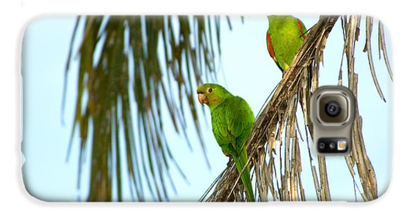 White-eyed Parakeets, Brazil Galaxy S6 Case by Gregory G. Dimijian, M.D.