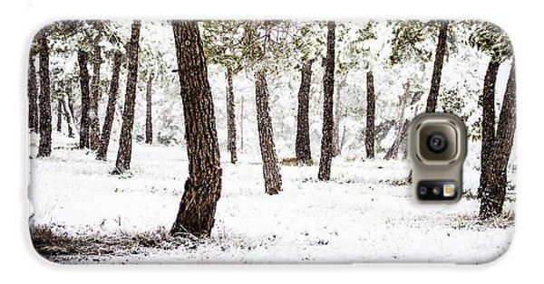 White Forest Galaxy S6 Case