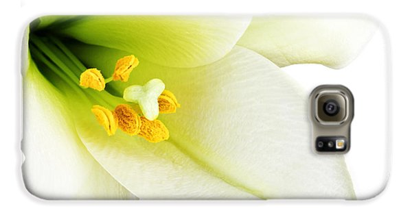 Lily Galaxy S6 Case - White Lilly Macro by Johan Swanepoel