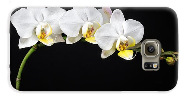 White Orchids Galaxy S6 Case
