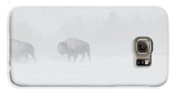 Whiteout Galaxy S6 Case by Sandy Sisti