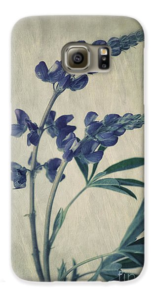 Flowers Galaxy S6 Case - Wild Lupine by Priska Wettstein