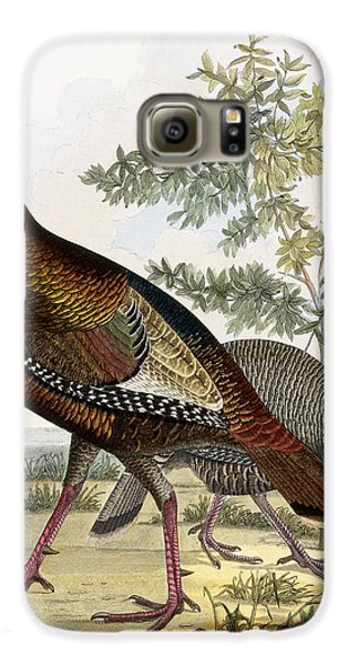 Wild Turkey Galaxy S6 Case by Titian Ramsey Peale