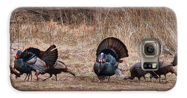 Wild Turkeys Galaxy S6 Case by Lori Deiter