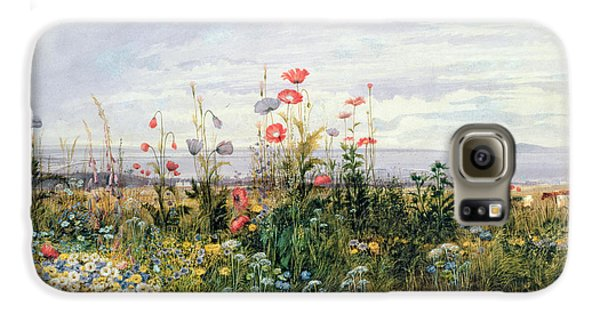 Wildflowers With A View Of Dublin Dunleary Galaxy S6 Case by A Nicholl