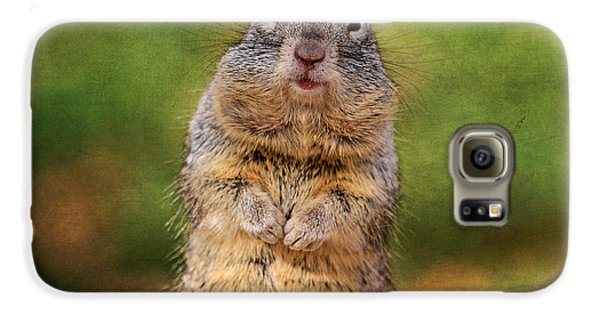 Will Work For Peanuts Galaxy S6 Case