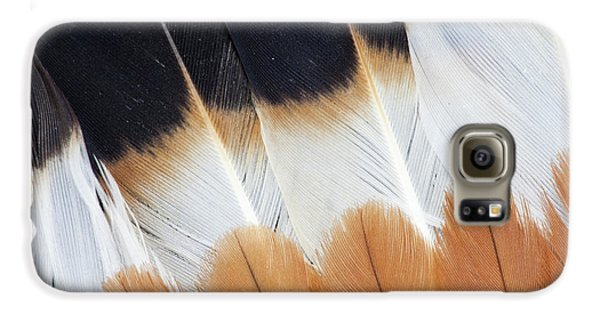 Wing Fanned Out On Northern Lapwing Galaxy S6 Case by Darrell Gulin