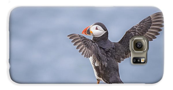 Puffin Galaxy S6 Case - Wings To Fly  by Evelina Kremsdorf