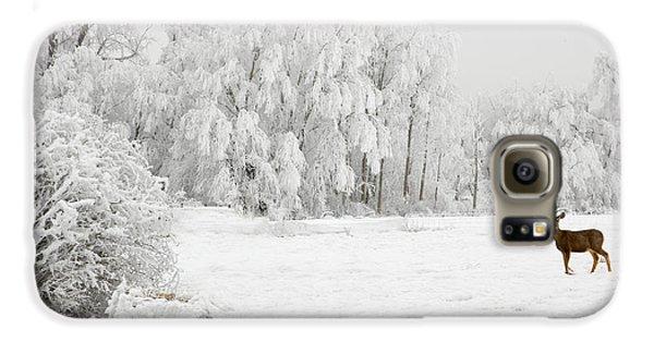 Winter Doe Galaxy S6 Case