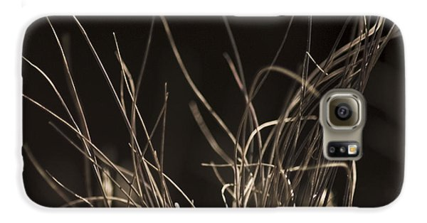 Galaxy S6 Case featuring the photograph Winter Grass 2 by Yulia Kazansky