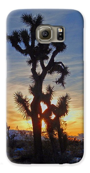 Winter Joshua Galaxy S6 Case