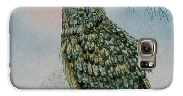 Winter Owl Galaxy S6 Case