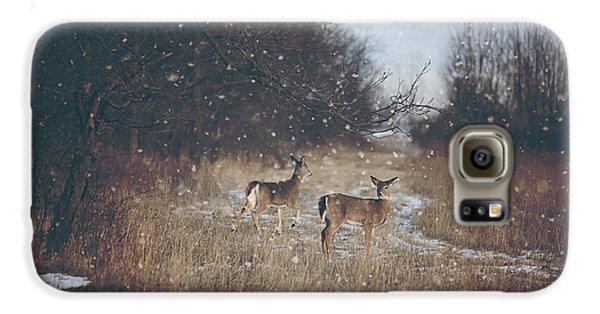 Winter Wonders Galaxy S6 Case by Carrie Ann Grippo-Pike