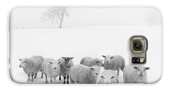 Winter Woollies Galaxy S6 Case by Janet Burdon
