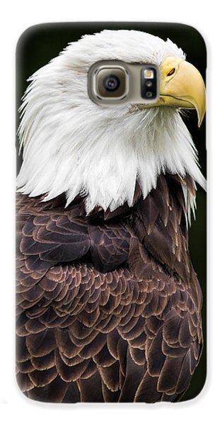 With Dignity Galaxy S6 Case by Dale Kincaid