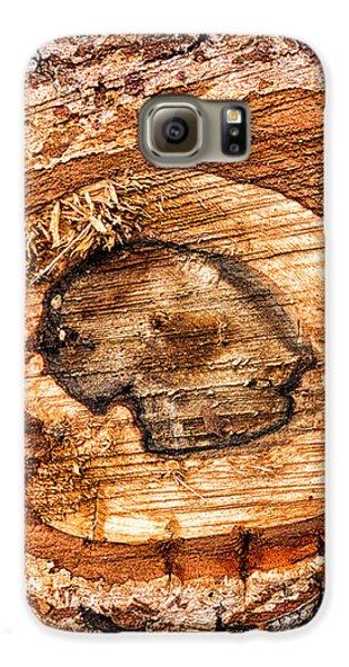 Wood Detail Galaxy S6 Case by Matthias Hauser