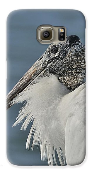 Wood Stork Portrait Galaxy S6 Case