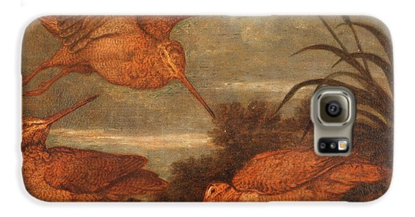 Woodcock Galaxy S6 Case - Woodcock At Dusk, Francis Barlow, 1626-1702 by Litz Collection