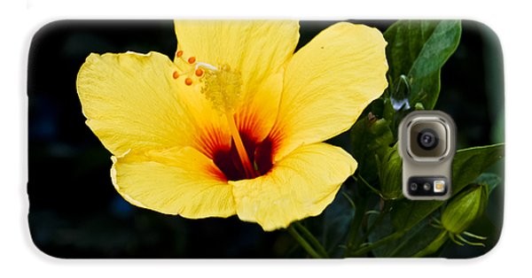 Yellow And Red Hibiscus Galaxy S6 Case
