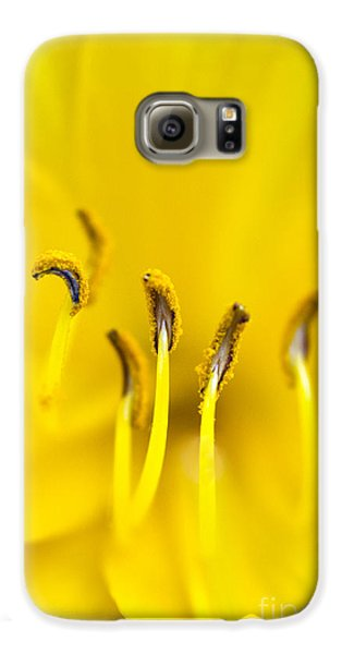 Yellow Galaxy S6 Case
