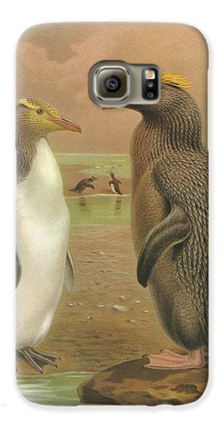 Yellow Eyed Penguin And Snares Crested Penguin  Galaxy S6 Case