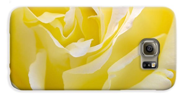 Rose Galaxy S6 Case - Yellow Rose by Svetlana Sewell