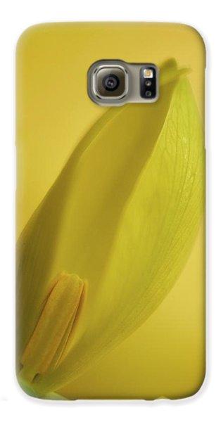 Yellow Trillium - Trillium Luteum Galaxy S6 Case