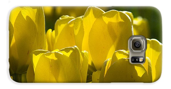 Galaxy S6 Case featuring the photograph Yellow Tulips  by Yulia Kazansky