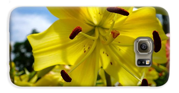 Yellow Whopper Lily 2 Galaxy S6 Case